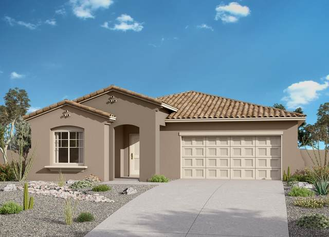 2133 N 211TH Drive, Buckeye, AZ 85396 (MLS #6057570) :: The Kenny Klaus Team