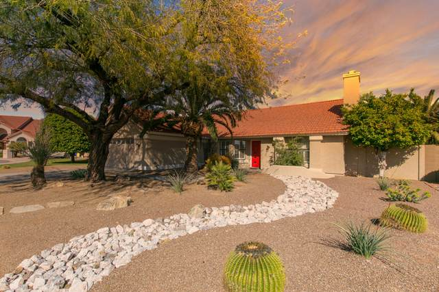 17619 N 56TH Place, Scottsdale, AZ 85254 (MLS #6057577) :: Conway Real Estate