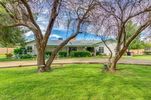 19632 E Calle De Flores, Queen Creek, AZ 85142 (MLS #6057588) :: The Laughton Team