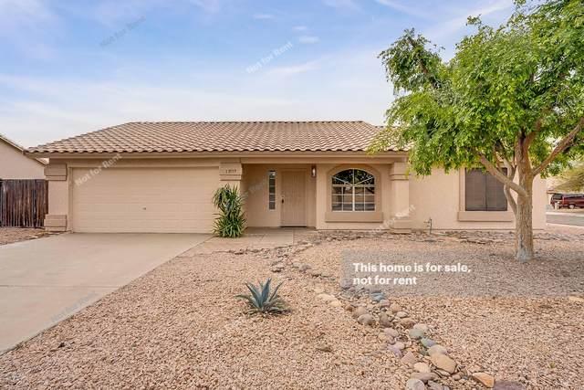 13519 E Chicago Street, Chandler, AZ 85225 (MLS #6057606) :: Brett Tanner Home Selling Team