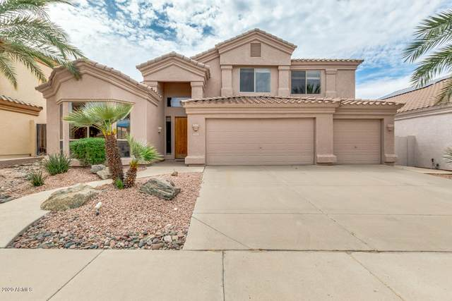 1151 E Cottonwood Lane, Phoenix, AZ 85048 (MLS #6057620) :: CANAM Realty Group