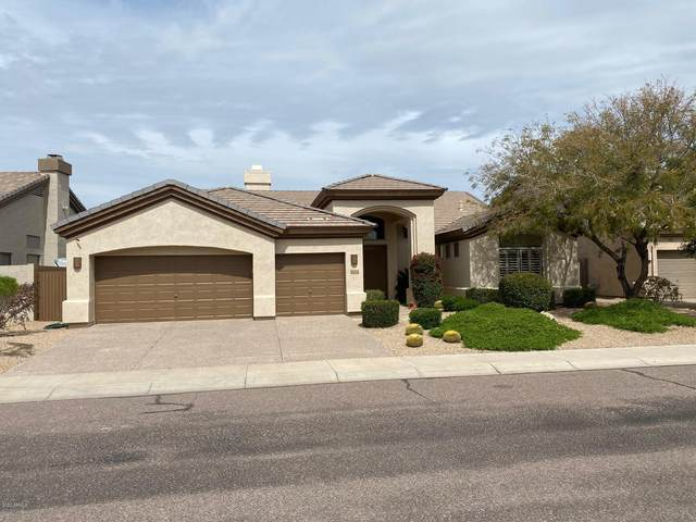 6438 E Claire Drive, Scottsdale, AZ 85254 (MLS #6057641) :: The Bill and Cindy Flowers Team