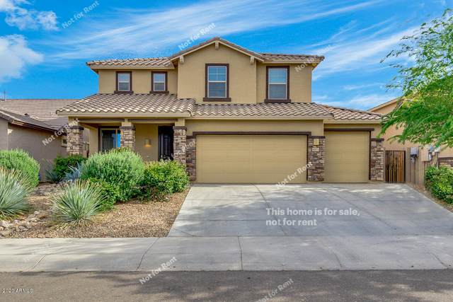 4571 W Maggie Drive, Queen Creek, AZ 85142 (MLS #6057648) :: The Kenny Klaus Team
