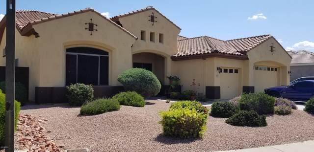 4925 N 127TH Drive, Litchfield Park, AZ 85340 (MLS #6057680) :: The Laughton Team