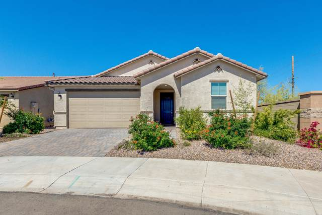 3978 E Constitution Drive, Gilbert, AZ 85296 (MLS #6057682) :: Conway Real Estate