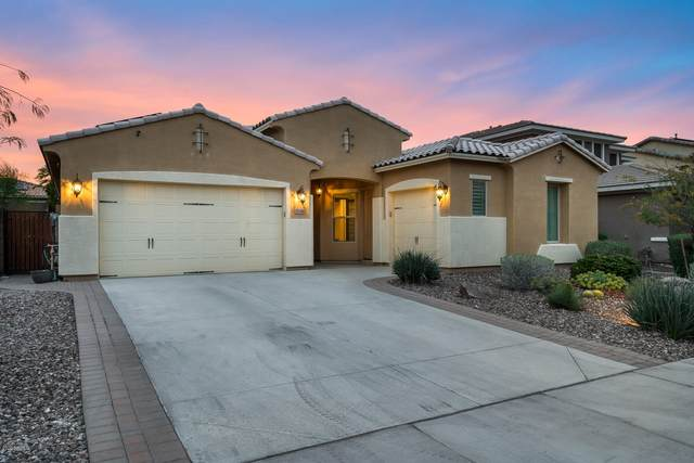 31664 N 131ST Avenue, Peoria, AZ 85383 (MLS #6057719) :: Power Realty Group Model Home Center