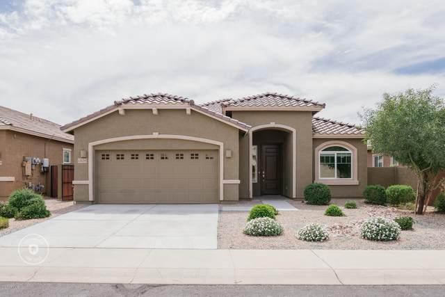 13135 W Cottontail Lane, Peoria, AZ 85383 (MLS #6057725) :: Power Realty Group Model Home Center