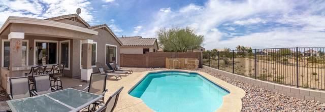 29746 N Little Leaf Drive, San Tan Valley, AZ 85143 (MLS #6057726) :: The Laughton Team