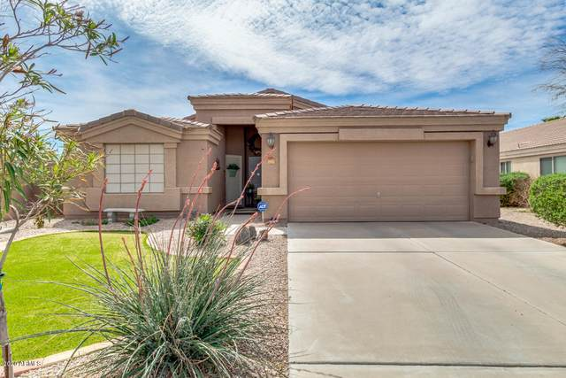 1663 E Bishop Drive, Casa Grande, AZ 85122 (MLS #6057729) :: Conway Real Estate
