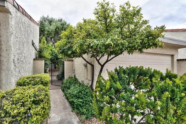 7615 E Bonnie Rose Avenue, Scottsdale, AZ 85250 (MLS #6057760) :: Brett Tanner Home Selling Team
