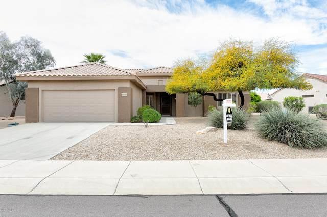 20330 N Wildflower Drive, Surprise, AZ 85374 (MLS #6057766) :: Long Realty West Valley