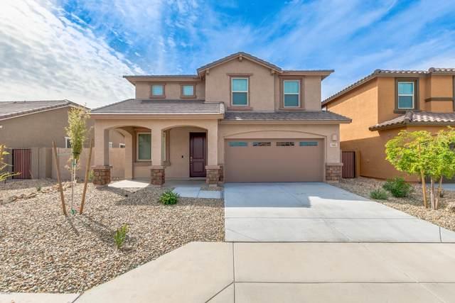 7661 W Whitehorn Trail, Peoria, AZ 85383 (MLS #6057783) :: Nate Martinez Team