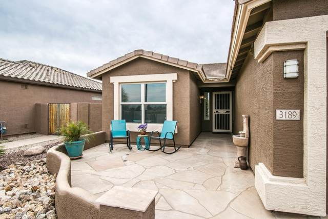 3189 E Hazeltine Way, Chandler, AZ 85249 (MLS #6057813) :: The Kenny Klaus Team