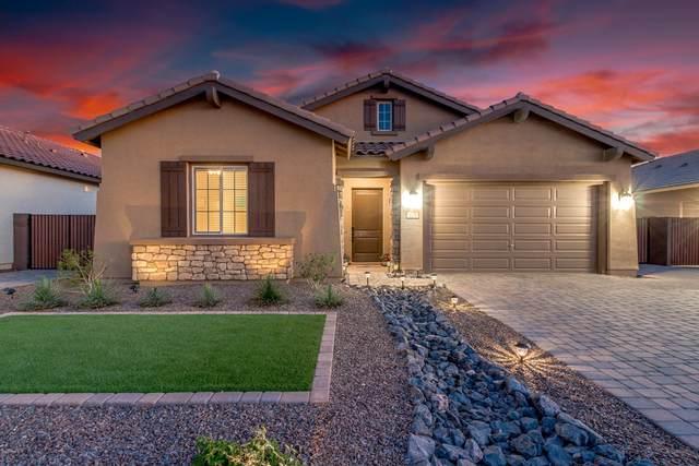 1179 W Spine Tree Avenue, Queen Creek, AZ 85140 (MLS #6057914) :: Long Realty West Valley