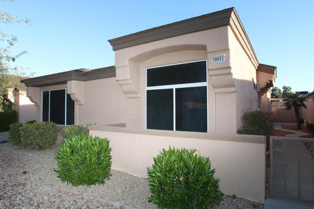 20023 N Greenview Drive, Sun City West, AZ 85375 (MLS #6057988) :: The Kenny Klaus Team