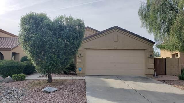 17531 W Boca Raton Road, Surprise, AZ 85388 (MLS #6057994) :: Conway Real Estate