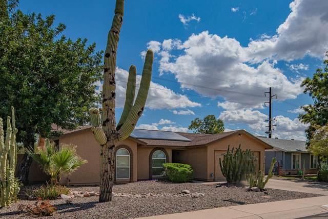 10221 S 49TH Street, Phoenix, AZ 85044 (MLS #6058026) :: The Daniel Montez Real Estate Group