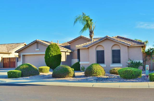 11241 E Roselle Avenue, Mesa, AZ 85212 (MLS #6058029) :: Long Realty West Valley