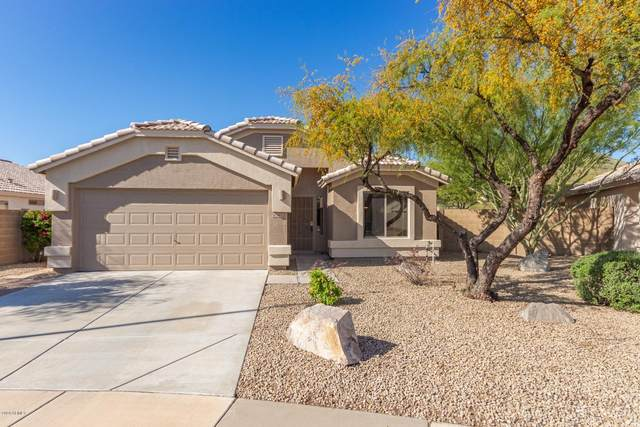24032 N 21st Way, Phoenix, AZ 85024 (MLS #6058035) :: Long Realty West Valley