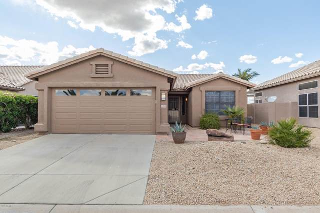 11538 W Lizard Court, Surprise, AZ 85374 (MLS #6058044) :: Brett Tanner Home Selling Team