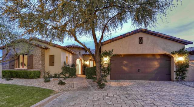 3078 S Primrose Court, Gold Canyon, AZ 85118 (MLS #6058049) :: The Bill and Cindy Flowers Team