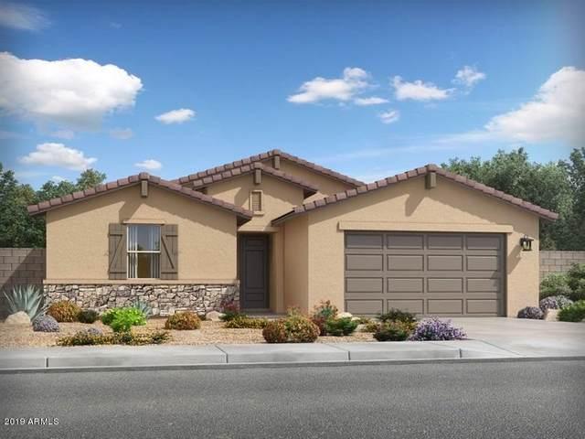 4081 W Crossflower Avenue, San Tan Valley, AZ 85142 (MLS #6058053) :: Power Realty Group Model Home Center