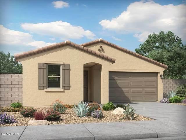 395 W Chaska Trail, San Tan Valley, AZ 85140 (MLS #6058092) :: Santizo Realty Group
