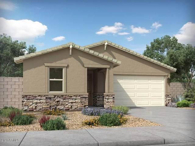 308 W Tenia Trail, San Tan Valley, AZ 85140 (MLS #6058096) :: Power Realty Group Model Home Center