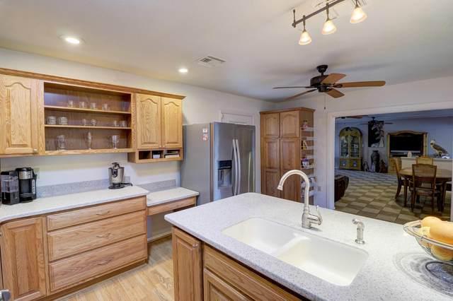 10407 N 101ST Avenue, Sun City, AZ 85351 (MLS #6058099) :: The Daniel Montez Real Estate Group