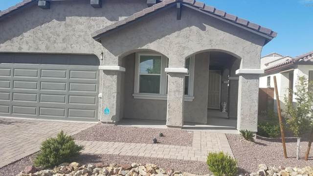 2242 W Beck Lane, Phoenix, AZ 85023 (MLS #6058101) :: REMAX Professionals