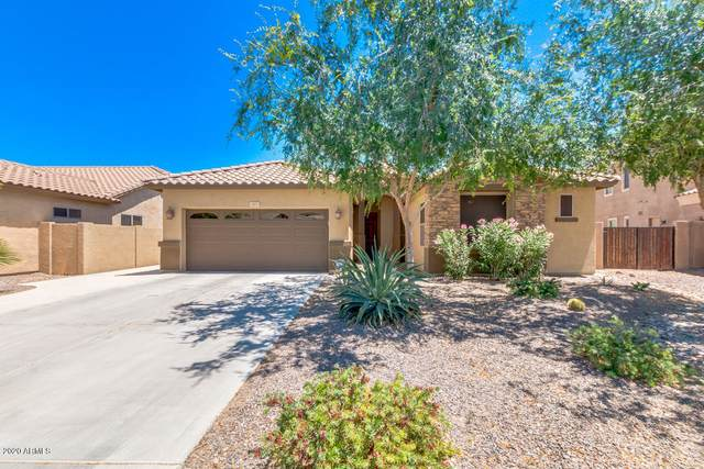 3891 S Halsted Drive, Chandler, AZ 85286 (MLS #6058103) :: CANAM Realty Group