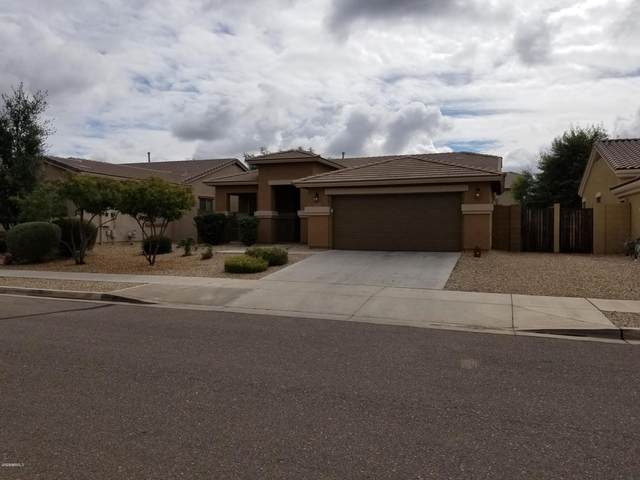 17549 W Aster Drive, Surprise, AZ 85388 (MLS #6058105) :: Nate Martinez Team