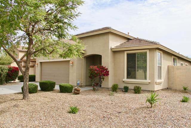 163 S 108TH Avenue, Avondale, AZ 85323 (MLS #6058139) :: The Daniel Montez Real Estate Group