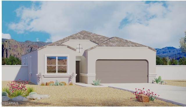 11665 E Sunflower Lane, Florence, AZ 85132 (MLS #6058156) :: Conway Real Estate
