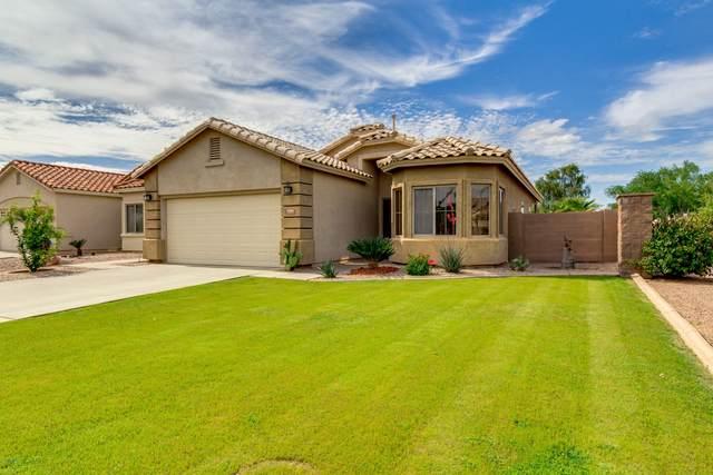 2906 E Cathy Drive, Gilbert, AZ 85296 (MLS #6058174) :: Arizona Home Group