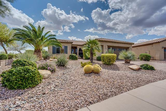 12533 W Rosewood Lane, Peoria, AZ 85383 (MLS #6058176) :: Arizona Home Group