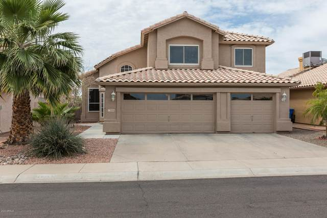 12006 S 44TH Street, Phoenix, AZ 85044 (MLS #6058201) :: Relevate | Phoenix