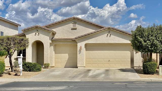 9238 W Black Hill Road, Peoria, AZ 85383 (MLS #6058211) :: Openshaw Real Estate Group in partnership with The Jesse Herfel Real Estate Group