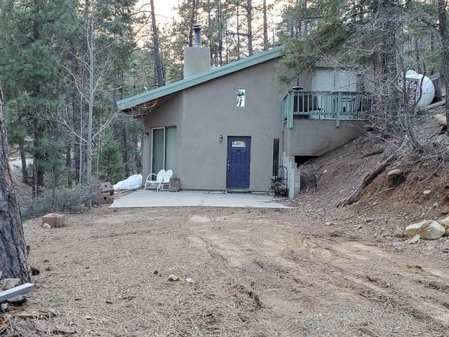 3985 E Blue John Lane, Prescott, AZ 86303 (MLS #6058246) :: CC & Co. Real Estate Team