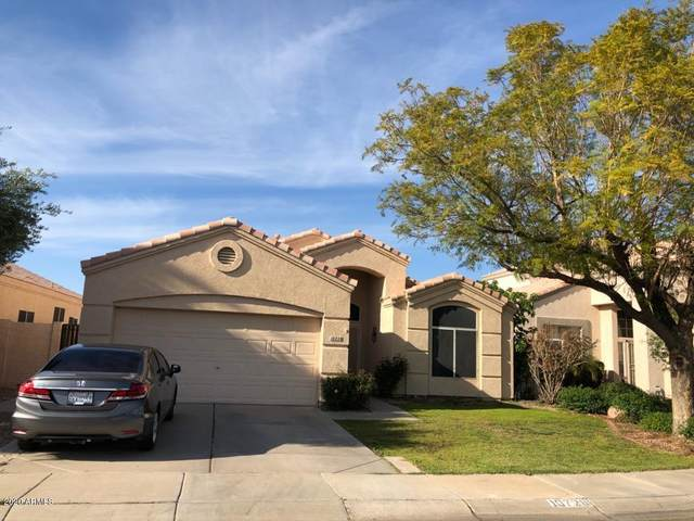 10728 W Bermuda Drive, Avondale, AZ 85392 (MLS #6058309) :: The Daniel Montez Real Estate Group