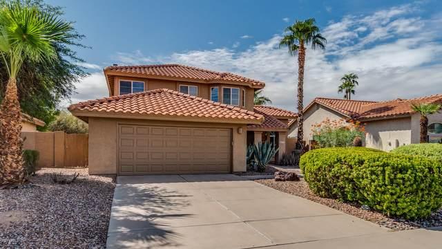 14076 S 40TH Street, Phoenix, AZ 85044 (MLS #6058310) :: CANAM Realty Group