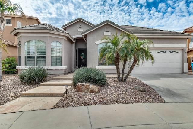 5623 W Maldonado Road, Laveen, AZ 85339 (MLS #6058312) :: Brett Tanner Home Selling Team