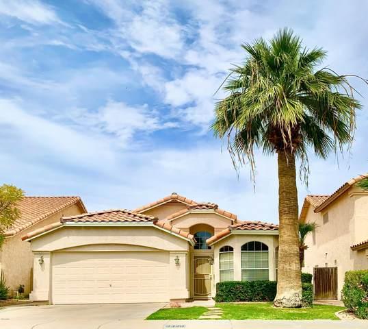 3328 E Long Lake Road, Phoenix, AZ 85048 (MLS #6058321) :: CANAM Realty Group
