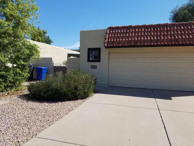 1847 W El Monte Place, Chandler, AZ 85224 (MLS #6058334) :: CANAM Realty Group