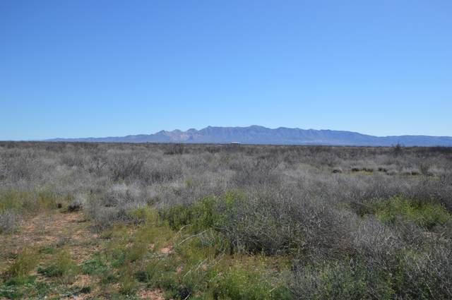 4035 W Yucca Lane, McNeal, AZ 85617 (MLS #6058338) :: Brett Tanner Home Selling Team