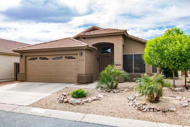 31363 N Claridge Circle, San Tan Valley, AZ 85143 (MLS #6058342) :: CANAM Realty Group