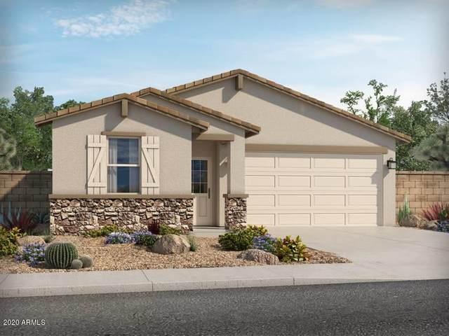 39905 W Williams Way, Maricopa, AZ 85138 (MLS #6058375) :: CANAM Realty Group