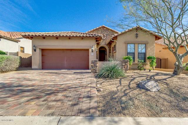 6921 E Portia Street, Mesa, AZ 85207 (MLS #6058379) :: The W Group