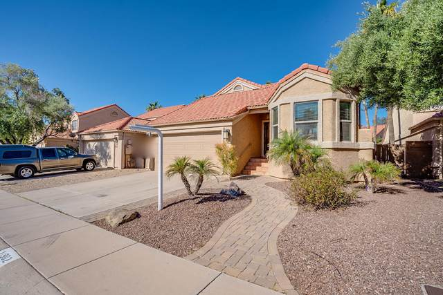 11902 N 112TH Way, Scottsdale, AZ 85259 (MLS #6058397) :: The W Group