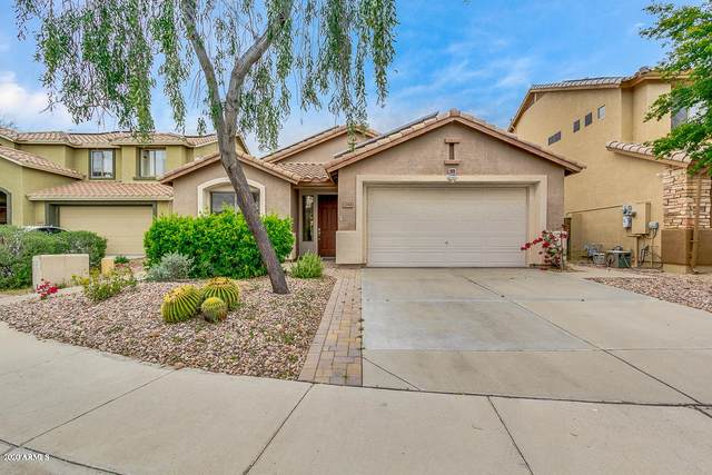 3344 W Twain Court, Anthem, AZ 85086 (MLS #6058401) :: Conway Real Estate
